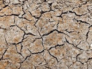 5 Reasons for Spiritual Dryness